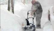 برق دو میلیون آمریکایی در سرمای بی سابقه توفان زمستانی قطع شد