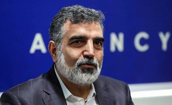 کاهش ۳۰ درصدی بازرسیهای آژانس از ایران