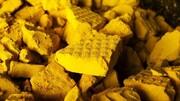منابع خرید کیک زرد و تملک سهام معادن پرتوزا مشخص شد