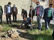 آیین درختکاری در مدارس ملارد برگزار شد