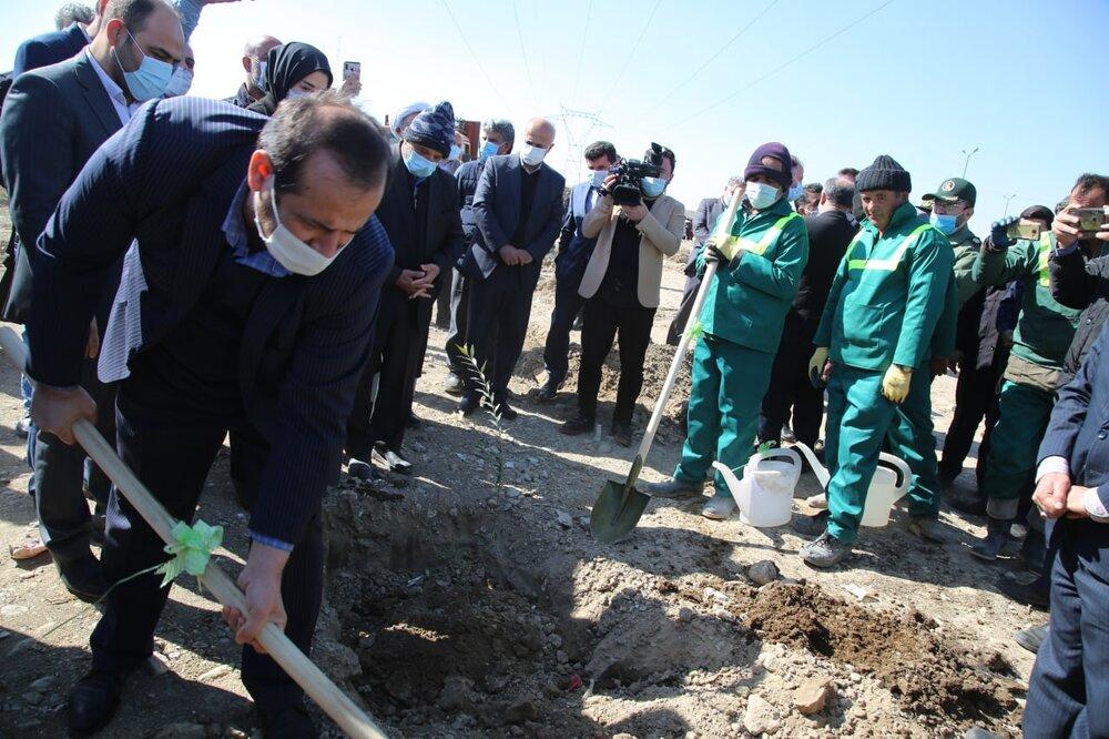 مراسم روز درختکاری در باغ زیتون اسلامشهر برگزار شد