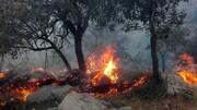مهار آتش سوزی جنگل گچساران بعد از 2 روز