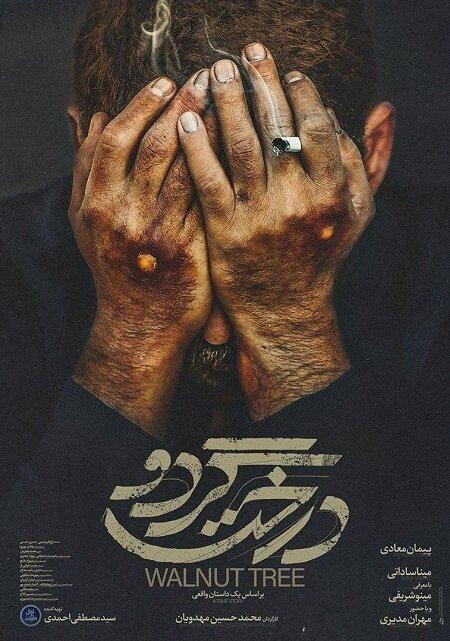 پوستر فیلم سینمایی «درخت گردو» رونمایی شد/روایتی متفاوت از تاریخ معاصر