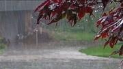 تامین ۴۸ درصد آب مورد نیاز کشور از بارندگیها/ با خشکسالی مواجهیم
