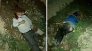 یک درگیری منجر به قتل دو برادر شد + جزئیات