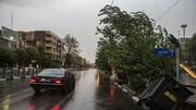 رگبار، رعد و برق و وزش باد شدید در استان تهران ادامه دارد