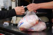 قیمت انواع مرغ