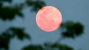 فردا شب ماه آسمان صورتی می شود