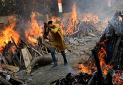 کابوس بی پایان کرونا در هند + تصاویر
