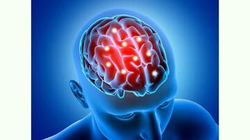 فصل ها بر عملکرد مغز و شخصیت افراد چه تاثیری دارند؟