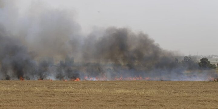 35 مورد آتش سوزی در اسرائیل