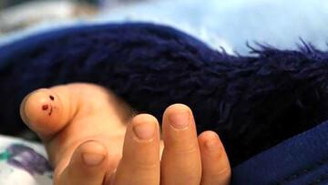 علت مرگ کودک 6 ساله پس از خوردن لبنیات برند داخلی چه بود؟