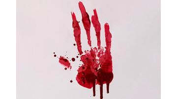 قتل با سنگ / مادرزن کشی در درگیری خانوادگی