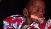 حمله ی موش ها به نوزاد تازه متولد شده / جزئیات