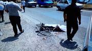 تریلی پیرمرد دوچرخه سوار را زیر کرد / جزئیات