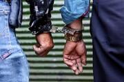 نزاع ۳۰نفره میان دو گروه دستفروش در پارک دانشجو / جزئیات
