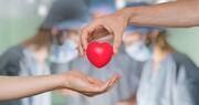 اهدای عضو، تپش قلب حیات در پسِ ایثاری هستیبخش