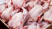 افزایش مجدد قیمت مرغ / جزئیات