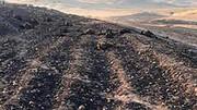 آتش سوزی دلخراش در میان عشایر / جزئیات