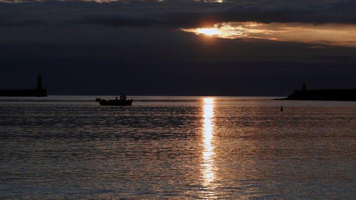 اقیانوسها در ورطه مرگ و نابودی