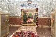 ویژه برنامه دهه کرامت در آستان حضرت عبدالعظیم حسنی(ع)