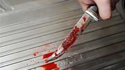 برادر کشی با پرتاب چاقو!/ جزئیات