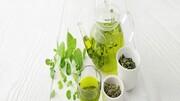 چای سبز را حتما در برنامه غذاییتان بگنجانید