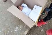 جنازه نوزاد ۲ روزه در کارتن بود ! + عکس جسد