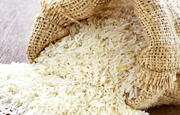 واردات برنج ممنوع شد!