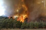 رد پای آمریکا در جنگل های ترکیه/ چرا شعله های آتش خاموش نمی شود؟