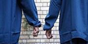 دستگیری ۵ نفر از عاملان نزاع دسته جمعی در قرچک