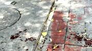 چاقو کشهای زورگیر به زنان حمله میکردند/«مهدی-س» و «حمید-ث» در چنگال قانون