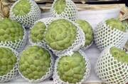 واردات دو نوع سیب از تایوان به چین ممنوع شد