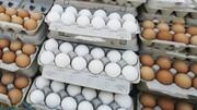 ممنوعیت هرگونه افزایش قیمت تخم مرغ