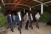 نوسازی بوستان ها در دستور کار شهرداری پردیس