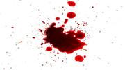درگیری جوانان در خیابان رنگ خون گرفت
