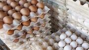 قیمت مصوب تخممرغ افزایش یافت