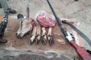 دستگیری یک گروه شکارچی غیرمجاز در فیروزکوه