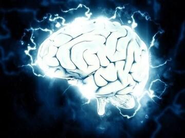 چرا مغز انسان به مرور کوچکتر میشود؟