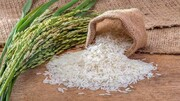 قیمت کاهش برنج و عدم خرید و فروش
