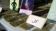 پلیس کرمانشاه گُل فروشان را به دام انداخت