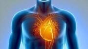 واکسن آنفلوانزا بر بیماران قلبی چه تاثیری دارد ؟