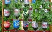 تولید بطری نوشابه از مواد ۱۰۰ درصد گیاهی