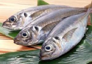 گرانی ماهی در شب عید/ افزایش ۵ درصدی قیمت آبزیان