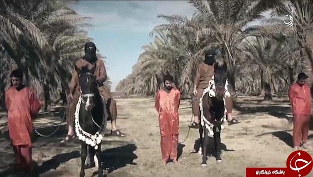 خلاقیت داعش در گردن زنی؛ این بار با اسب! + فیلم و تصاویر