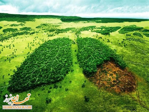 توجه به محیط زیست یک وظیفه فراجناحی و مردمی/لزوم مطالعات اثرات زیست محیطی در پروژه ها قبل از اجرا /واحد های صنعتی شناسنامه دار میشوند