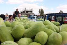 قیمت انواع میوه در آستانه شب یلدا