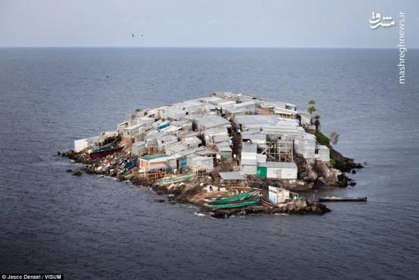 تصاویر/ پرجمعیتترین جزیره جهان