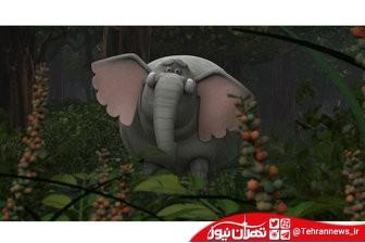 """فروش 500 هزار دلاری """"فیلشاه"""" در 3 کشور عربی"""