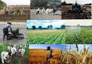 نحوه پیشگیری کشاورزان از وقوع خسارت